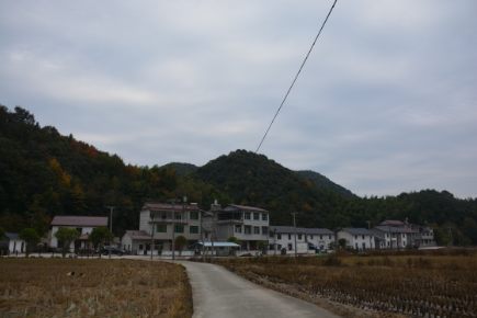 美丽的村庄.png