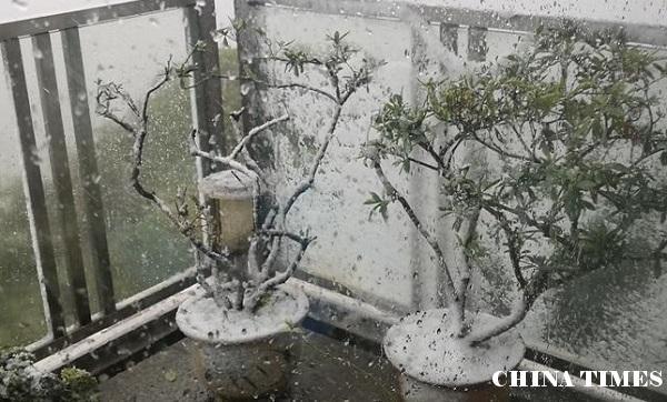 武汉日记:山雨欲来