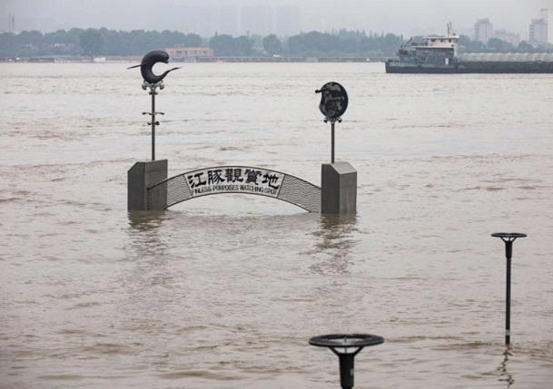 陈桂亚:长江中下游防汛也不能因有三峽大坝而高枕无忧