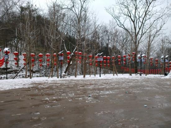 7隆冬积雪更添美景.jpg